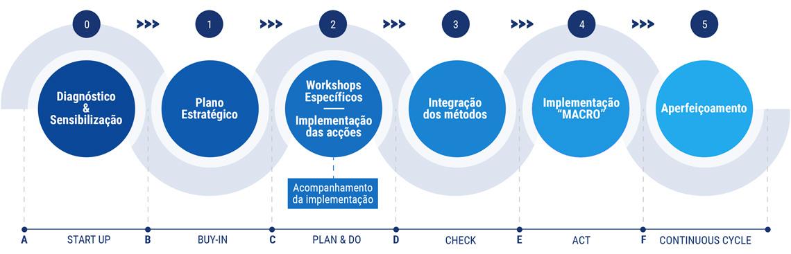 Consultoria Fases